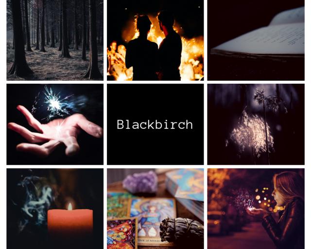 Blackbirch by K.M. Allan