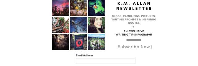 Blog Homepage Newsletter
