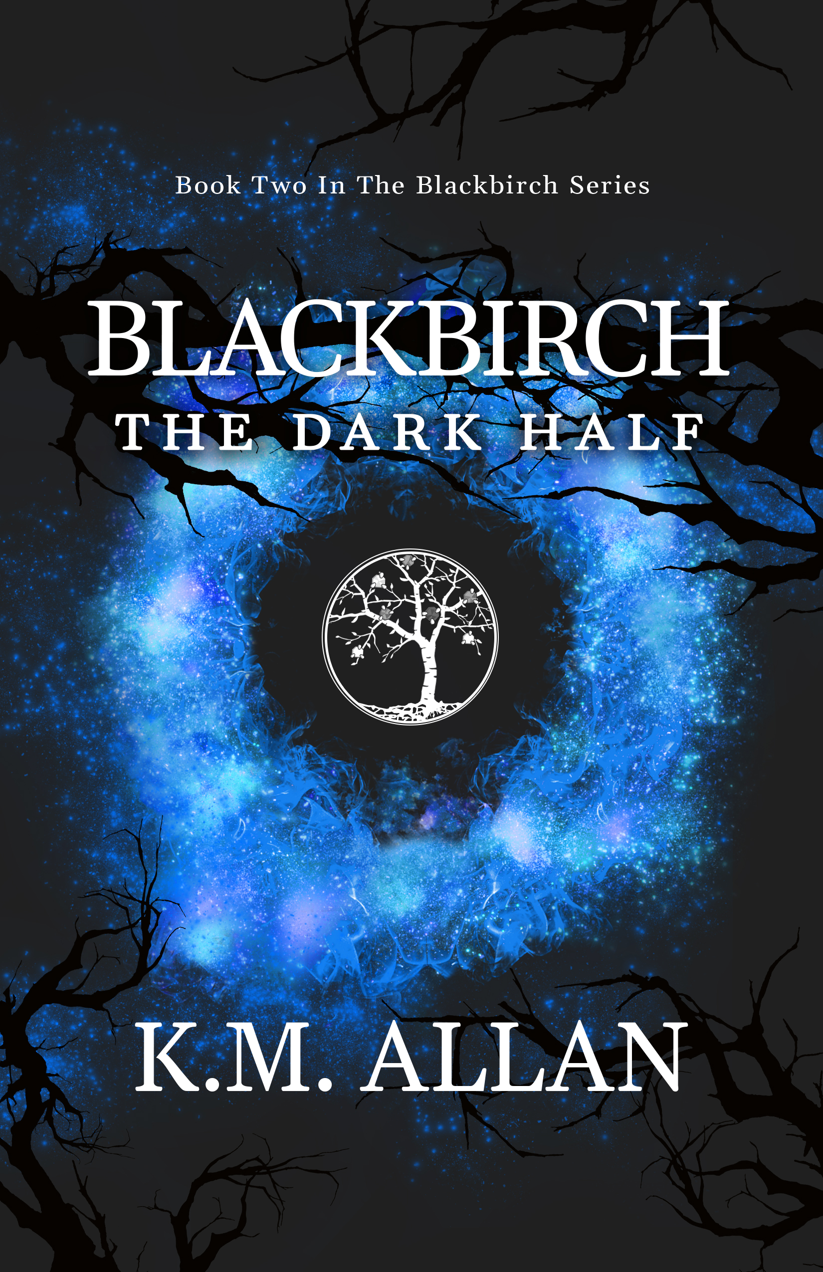 Blackbirch The Dark Half Cover