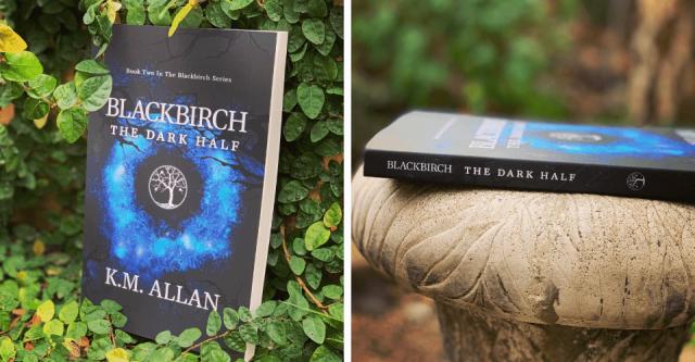 Blackbirch The Dark Half Book